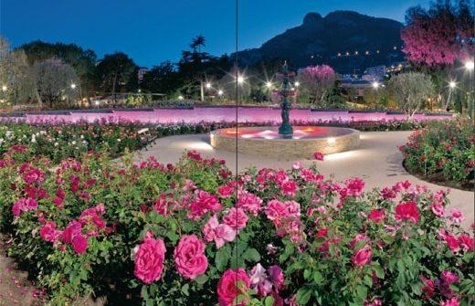 Livre Monaco